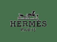 hermes logo icon